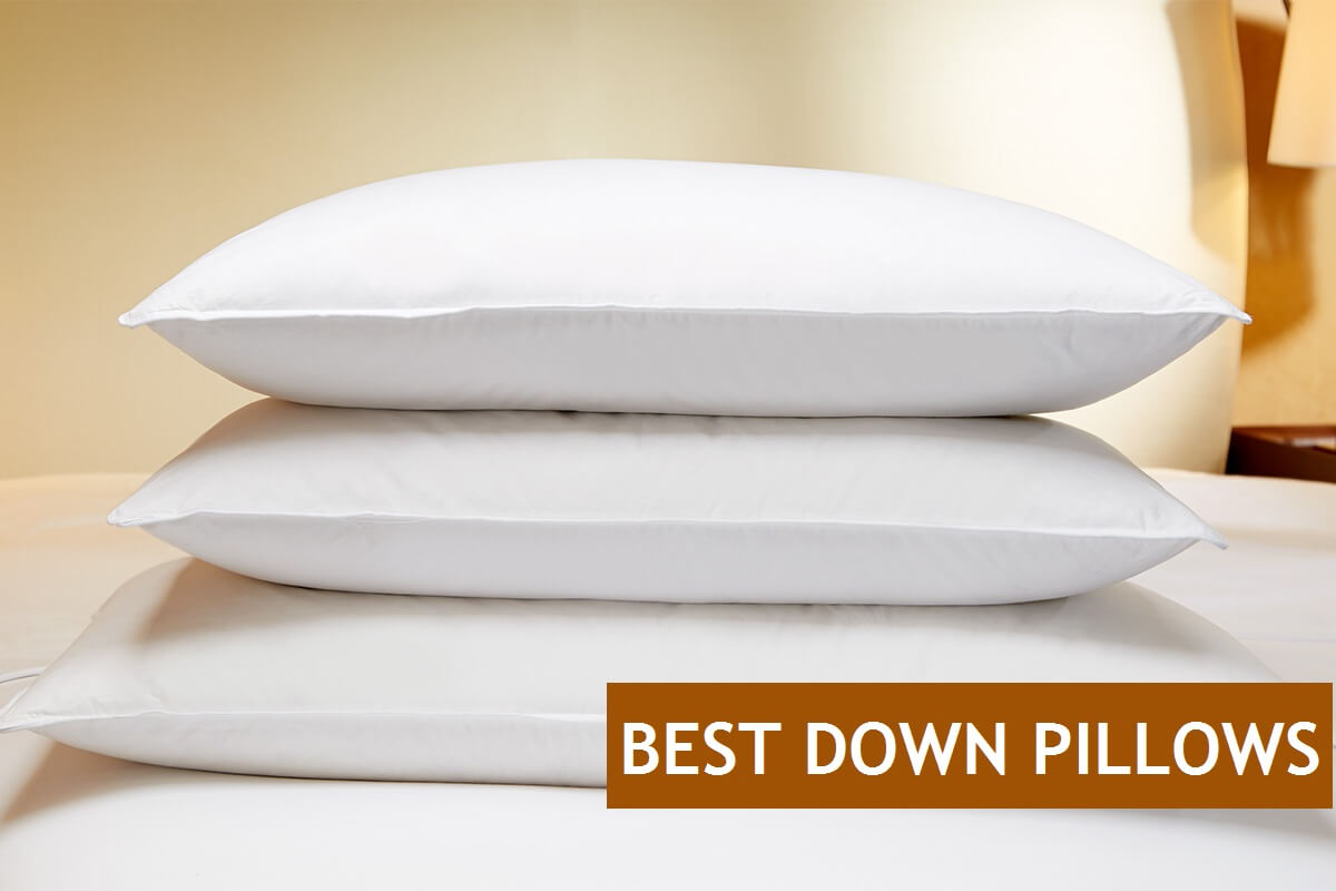 Top 7 Best Down Amp Feather Pillows You Can Buy Online
