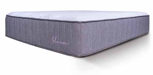Bloom Mattress