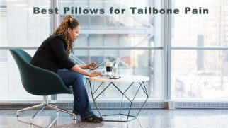 Best Coccyx Cushions